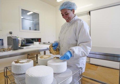 métier conditionneur fromage